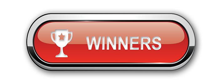 Ashton Building Systems Winners